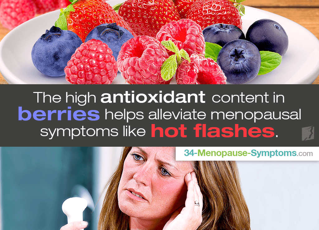 berries for menopause hot flashes