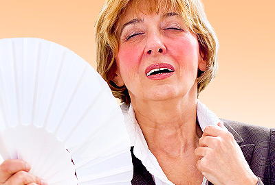 Estrogen and Hot Flashes: The Hormonal Link