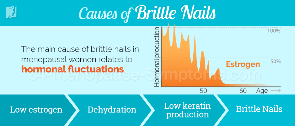 Causes of brittle nails