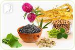 Herbal Remedies during Perimenopause