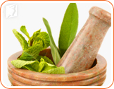 Phytoestrogenic herbs may balance hormone levels