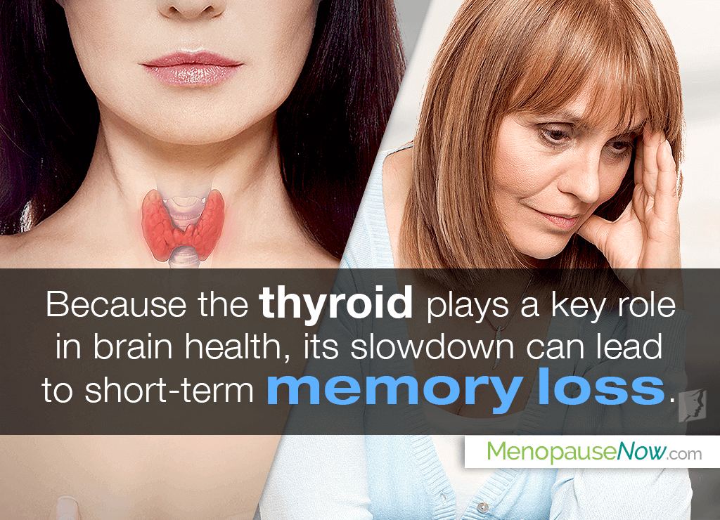 All About Thyroid and Memory Loss