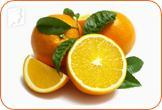 34MS-bnf-citrus-ftg-meno3