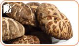 Eating Shiitake Mushrooms to Deal With Your Menopausal Fatigue3