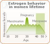 Estrogen behavior in women lifetime