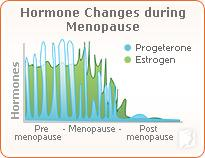 The Link between Breast Cancer and Menopause Symptoms2