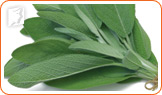 Herbs like sage have cooling properties.