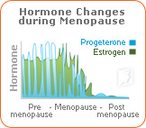 Hormone changes during menopause.