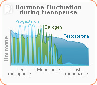 Hormone fluctuation during menopause