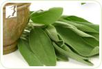 4 Herbal Remedies to Treating Menopause Symptoms