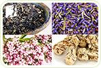 4 Herbal Teas for Memory Lapses