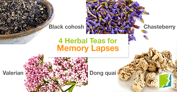 4 Herbal Teas for Memory Lapses