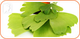 Ginkgo biloba helps to reduce mood swings and depression.