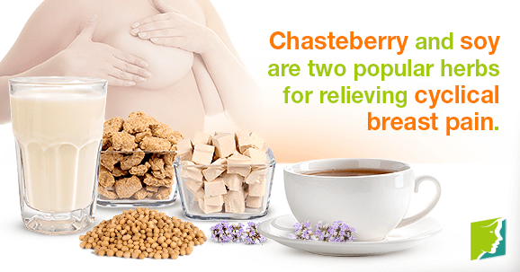 Chasteberry and soy are two popular herbs for relieving cyclical breast pain.