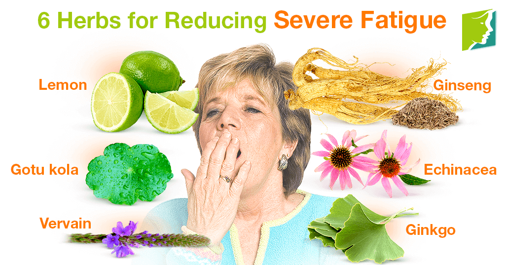 6 Herbs for Reducing Severe Fatigue