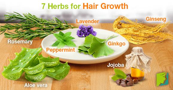 7 Herbs for Hair Growth
