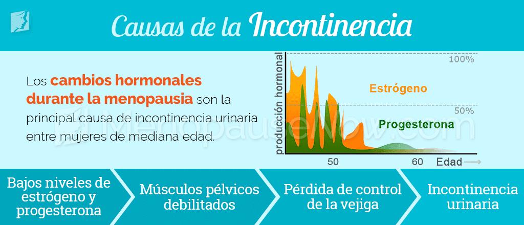 Causas de la incontinencia