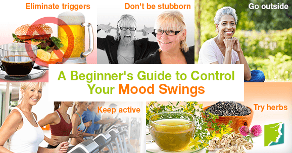 A Beginner's Guide to Control Your Mood Swings