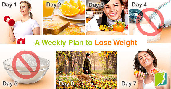 Weekly plan to lose weight fast