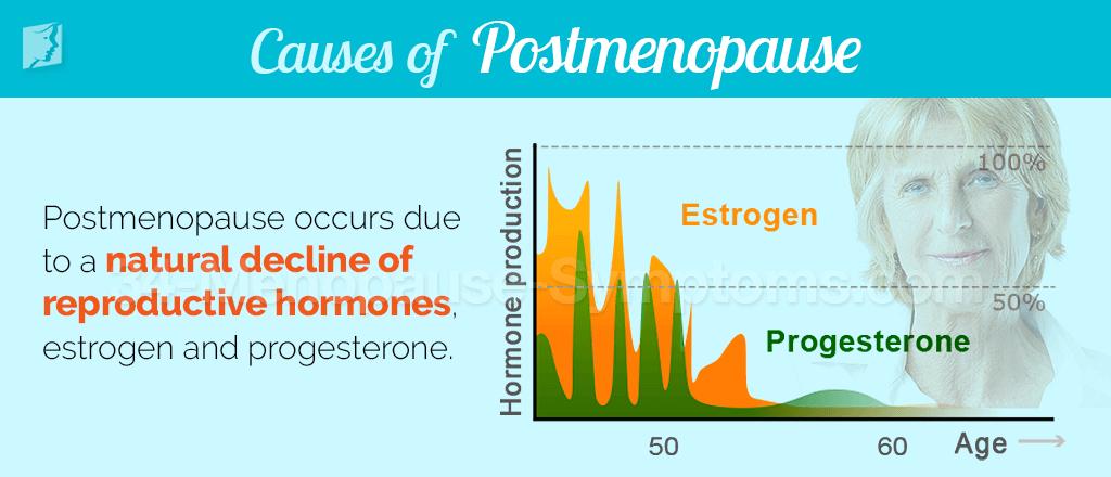 Causes of postmenopause