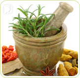Herbs: natural therapies are a good option to relieve anxiety symptoms