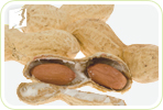 Are Peanuts Beneficial for Heart Health in Menopausal Women?