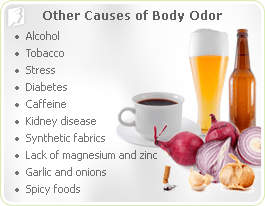 Other Causes of Body Odor