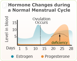 changes feeding breast hormone after