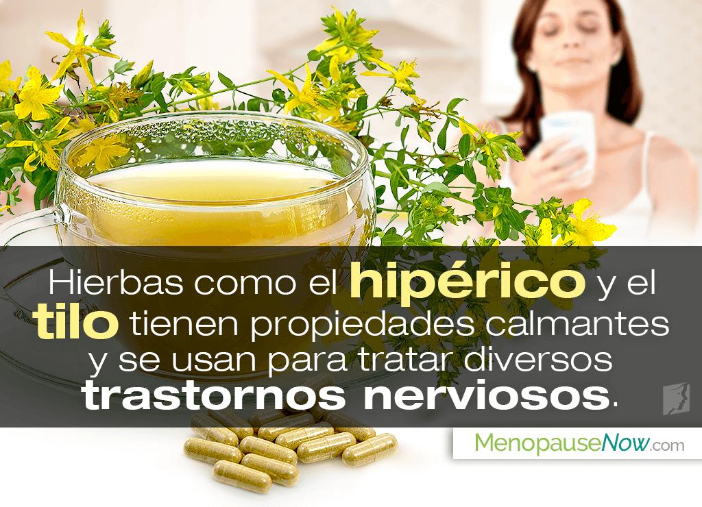 4 hierbas para los ataques de pánico en la menopausia