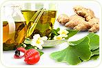 Can Herbal Supplements Help to Lose Weight?