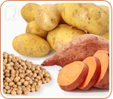 Sweet potatoes, soy and potatoes can help minimize the symptoms of menopause
