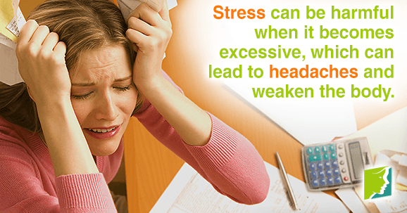 When stress becomes excessive can lead to headaches