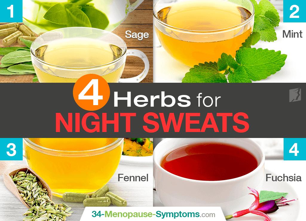 4 Herbs for Night Sweats