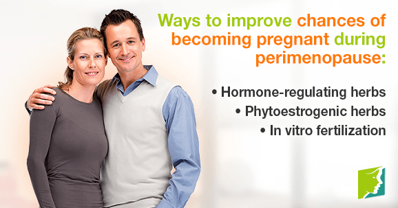 Ways to improve chances of becoming pregnant during perimenopause
