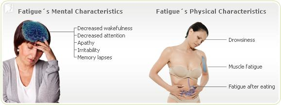 Fatigue´s mental and physical characteristics