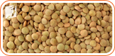 Lentils: Women who are menopausal need more iron and protein to help prevent hair loss