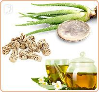 herbal treatment for hair loss