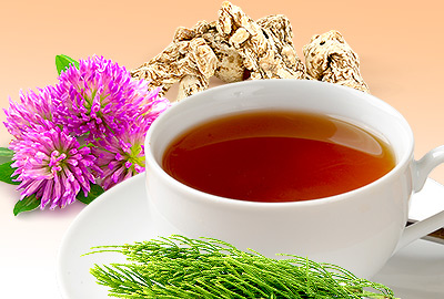Herbs for Osteoporosis
