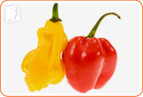 It is necessary to avoid spicy foods like peppers during menopause