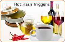 Diet and Hot Flashes2