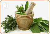 Herbal remedies can help women deal with excessive sweating.