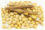 How Can Soy Help Relieve My Hot Flashes?