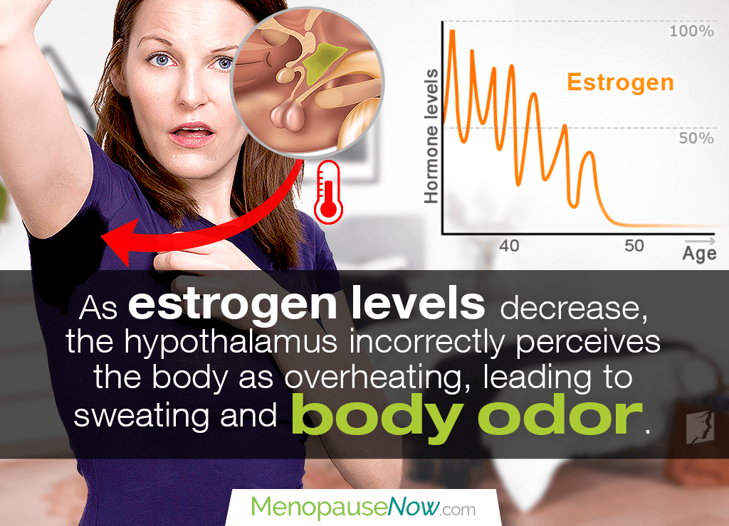 A decrease in estrogen confuses the hypothalamus and produces perspiration