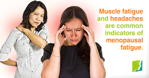 Muscle fatigue and headaches are common indicators of menopausal fatigue.