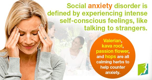 Social anxiety disorder is defined by experiencing intense self-conscious feelings, like talking to strangers.