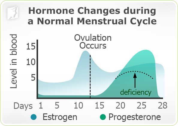 Progesterone Pills Start Period