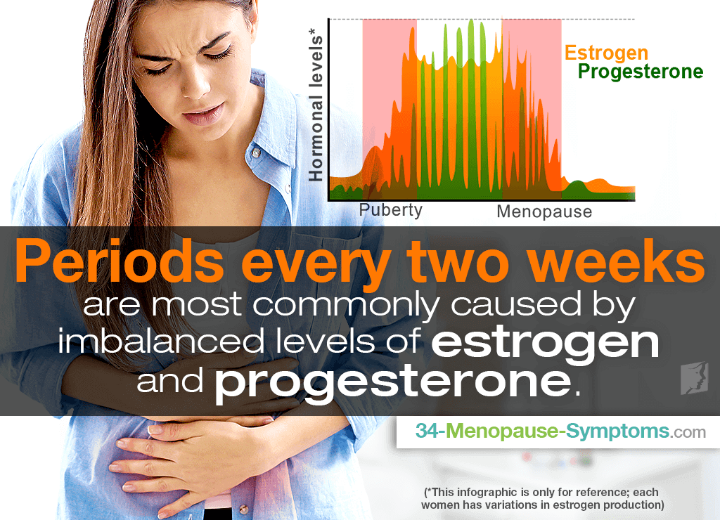 Periods every two weeks are most commonly caused by imbalanced hormonal levels