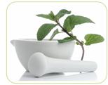 loss of libido herb