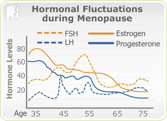 Hormonal Fluctuations during Menopause