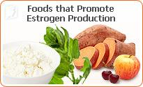 Foods that promote estrogen production.